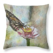 Chinese Butterfly Throw Pillow