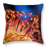Chinese Flower 1 Throw Pillow