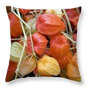 Chinese Lantern Flowers Throw Pillow