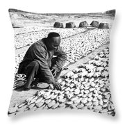 Chinese Man Drying Fish On The Shore - C 1902 Throw Pillow
