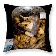 Chinese Snake Wine Throw Pillow