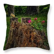 Chip Monk The Chipmunk Throw Pillow