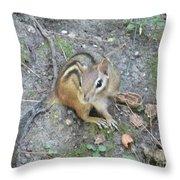 Chipmunk Feast Throw Pillow