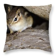 Chipmunk In Danger Throw Pillow