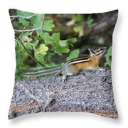 Chipmunk On A Log Throw Pillow