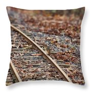 Chipmunk On The Railroad Track Throw Pillow