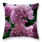 Chive Blossom Throw Pillow