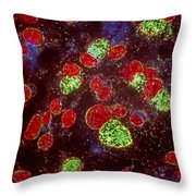Chlamydia Infected Culture Throw Pillow by M I Walker
