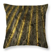 Chocolate Steel Throw Pillow
