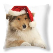 Christmas Collie Pup Throw Pillow