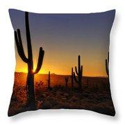 Christmas Morning In Arizona  Throw Pillow
