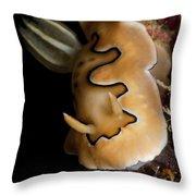Chromodoris Coi Sea Slug Nudibranch Throw Pillow