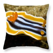 Chromodoris Magnifica Nudibranch Throw Pillow