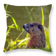 Chucky Woodchuck Throw Pillow