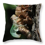 Cicada - Third In Series Throw Pillow