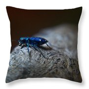 Cicindellidae A Family Of Preditors Throw Pillow