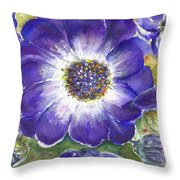 Cineraria Of South Africa  Throw Pillow