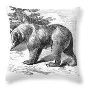 Cinnamon Bear Throw Pillow