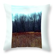 Cinnamon Fields Throw Pillow