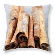 Cinnamon Sticks Throw Pillow by Elena Elisseeva