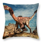 Citipati In The Desert Throw Pillow