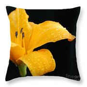 Citrus Rain II Throw Pillow