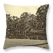 City Park Lagoon Sepia Throw Pillow