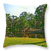 City Park Lagoon Throw Pillow