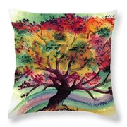 Clad In Color Throw Pillow