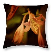 Cladis 03s Throw Pillow