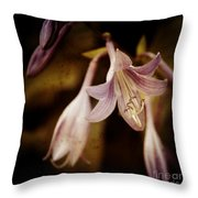 Cladis 04s Throw Pillow