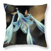 Cladis 22 Throw Pillow