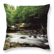 Clare River, Clare Glens, Co Tipperary Throw Pillow