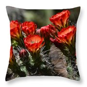 Claret Cup Cactus  Throw Pillow