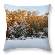 Clash Of Seasons Throw Pillow