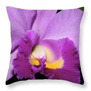 Classic Purple Orchid Throw Pillow