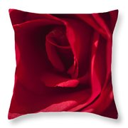 Classic Rose Throw Pillow
