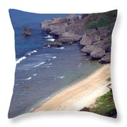 Clean Beach Throw Pillow
