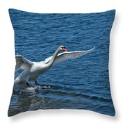 Clean Landing Throw Pillow