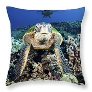 Cleaning Station Iv Throw Pillow