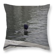 Cleaning The Sarovar In The Golden Temple Throw Pillow