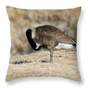 Cleaning Up Throw Pillow