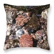 Clear And Pure Throw Pillow