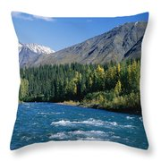 Clear Flowing Honolulu Creek And Fall Throw Pillow