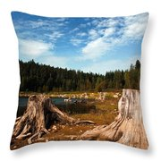 Clear Lake Oregon Throw Pillow