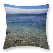 Clear Water And Coral Throw Pillow