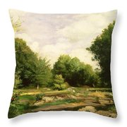 Clearing In The Woods Throw Pillow