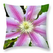 Clematis Blossom Throw Pillow