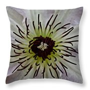 Clematis Stamen Throw Pillow
