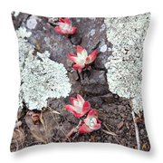 Cliff Lettuce Throw Pillow